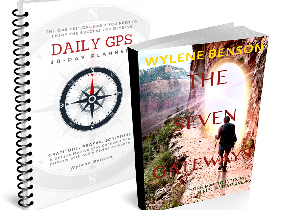 Daily GPS Planner/Book Combo
