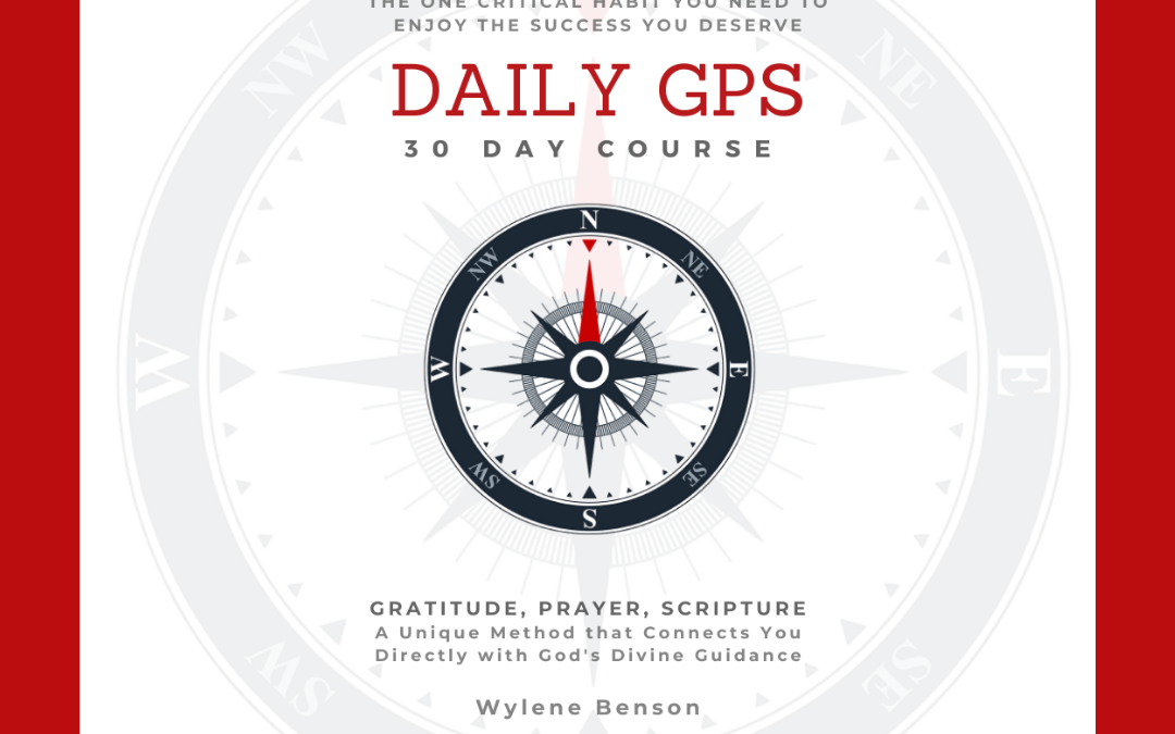 Daily GPS Planner, Course, Pillow Combo