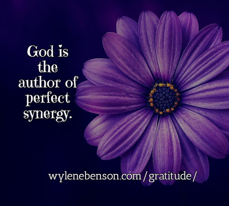 Gratitude for Perfect Synergy