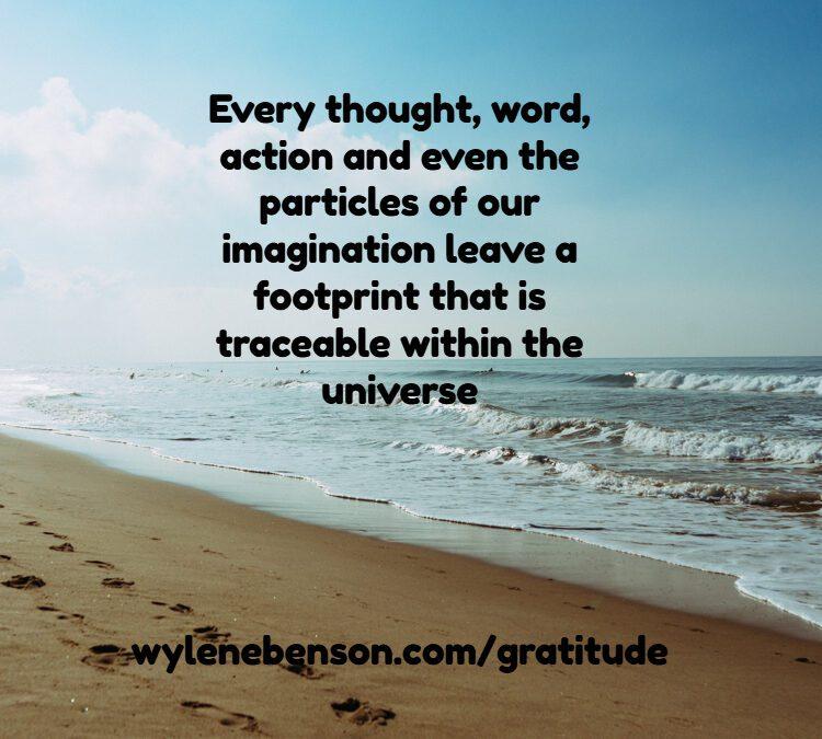Gratitude For Distraction