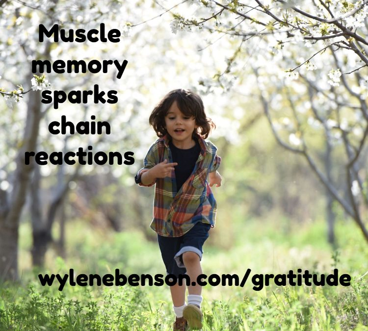 Gratitude For Muscle Memory