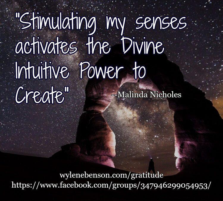 Gratitude for Stimulating Senses