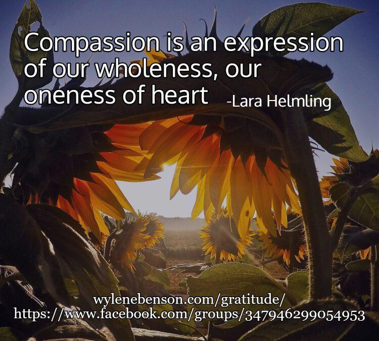 Gratitude for Compassion