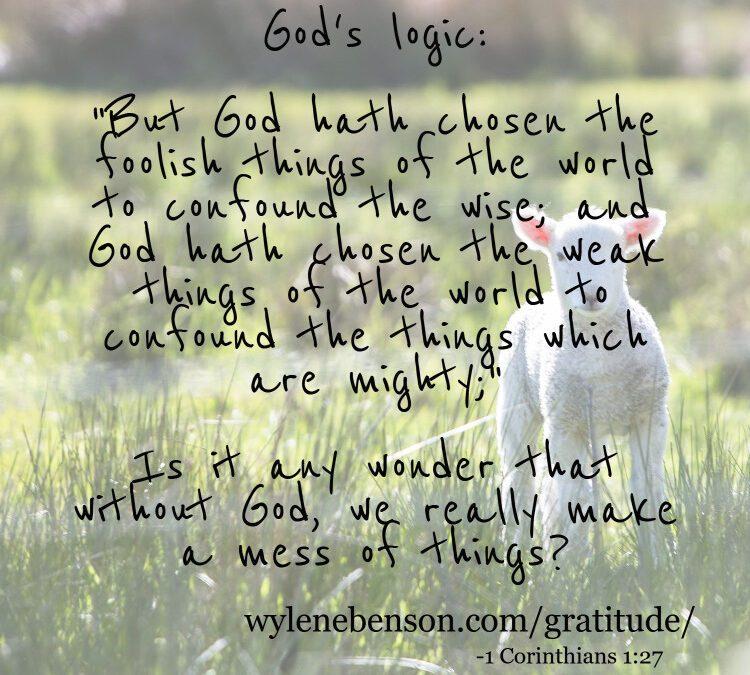 Gratitude for My Divine Calling