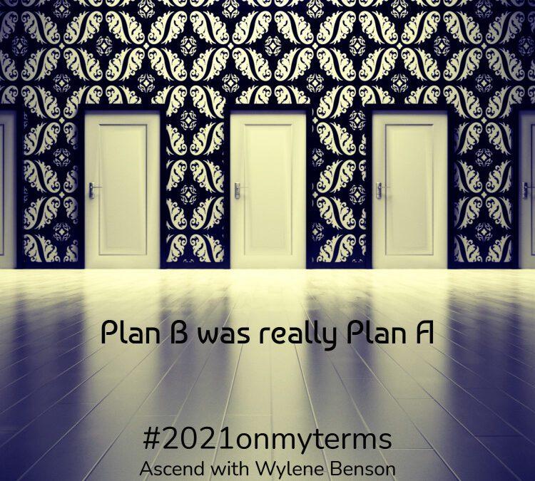 Gratitude for Plan B
